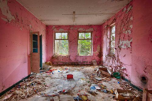 De Roze kamer van Rens Bok