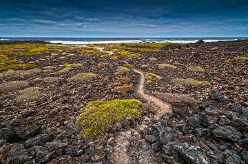 Landschap strand en zee bij Lanzarote Spanje von Jeroen Bos