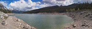 Medicine Lake van