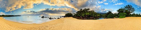 Tropisch strand 360 panorama