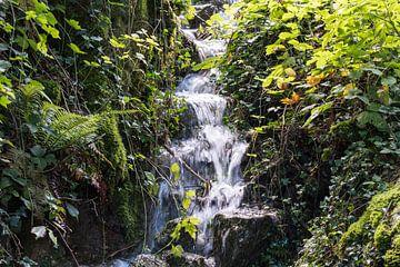Waterval als stroompje uit de bergen tussen het groen van Idema Media