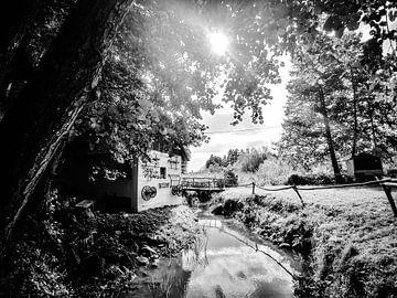 landschap in Kroatië (zwart/wit)  van