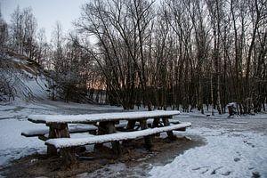 Picknick in de sneeuw