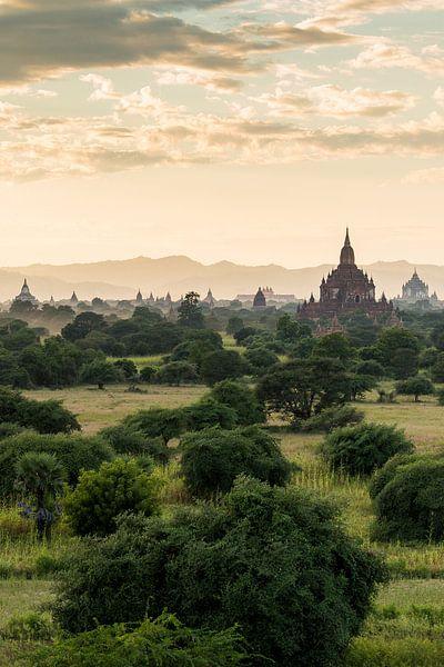 Bagan van Cindy Nijssen