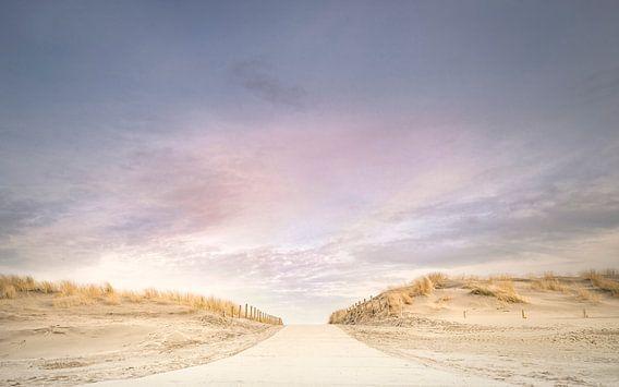 Pastelkleurige Namiddag .  van Jacqueline de Groot