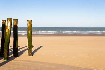 Strand von Marc Arts
