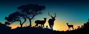 Family Deer