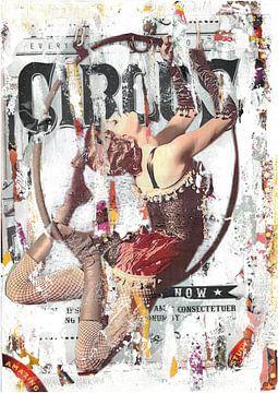 Trapez-Künstler von Nora Bland