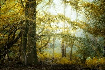 Gelb Mellow von Kees van Dongen