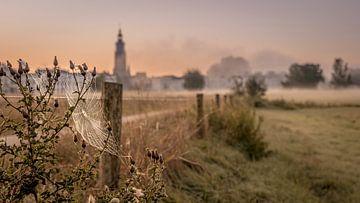 Uiterwaarden met zicht op skyline Zutphen in  herfstsfeer. van M.J. Böhmer