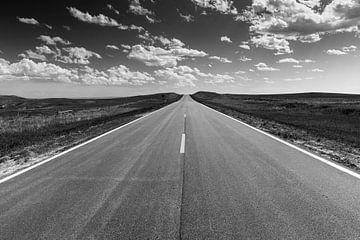 De eindeloze weg von Bart Harmsen