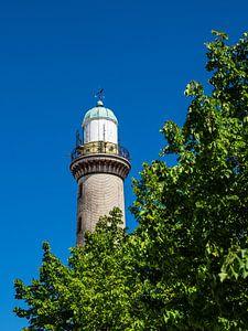Blick auf den Leuchtturm mit Baum in Warnemünde