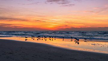 Heerlijke zonsondergang in Noordwijk von Richard Steenvoorden