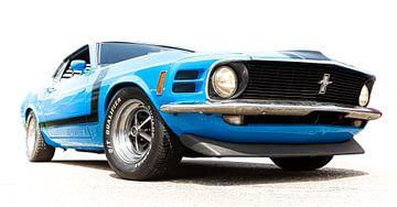 Mustang sur marco de Jonge