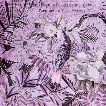 Papegaai Vintage Kunst van Andrea Haase