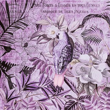 Papagei Vintage Art von Andrea Haase
