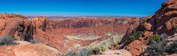 Panorama van het landschap in Canyonlands, Utah van Rietje Bulthuis