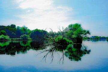 Bomen in de Maas van george vogelaar