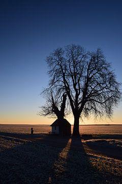 Kapel in bevroren ochtendzon van