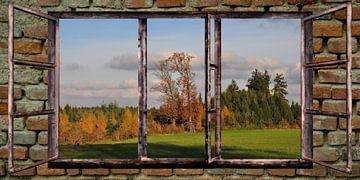 raam uitzicht - herfst van Christine Nöhmeier