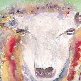 Moutons colorés, aquarelle sur Catharina Mastenbroek
