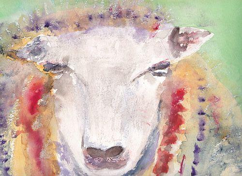 Moutons colorés, aquarelle