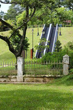 Rolltreppe im Park von Martijn Stoppels