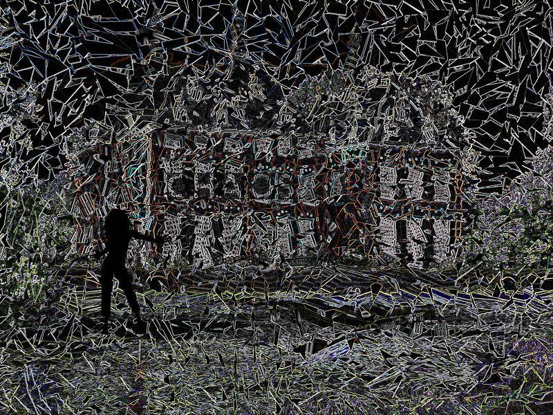 Chaos van Carla van Zomeren