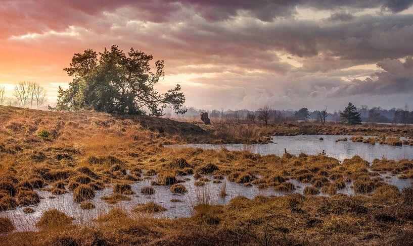 Dreigende onweerswolken op het Hageven van Peschen Photography