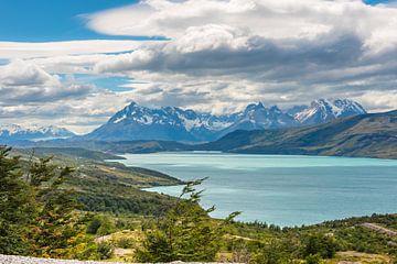 Meer in Patagonie von Trudy van der Werf