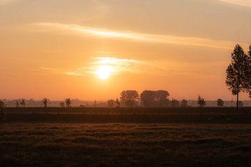 warme lente ochtend van Tania Perneel