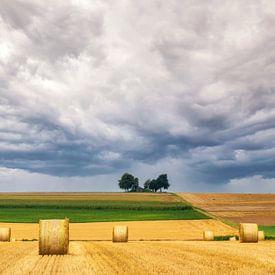 Heuvel landschap in de Moezel van Ilya Korzelius