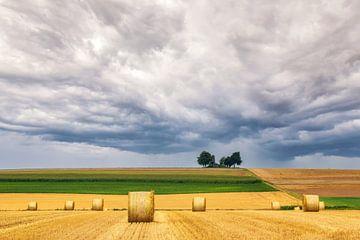 Paysage vallonné de la Moselle sur Ilya Korzelius