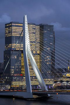 Erasmusbrug / De Rotterdam van Prachtig Rotterdam