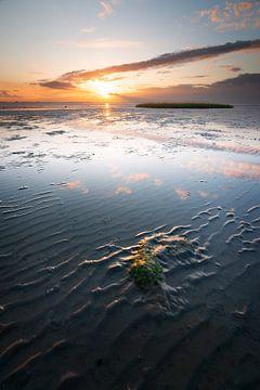 Coucher de soleil sur l'Escaut oriental sur Coen Janse