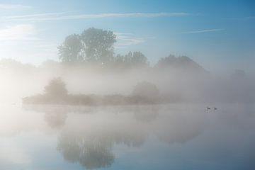 Nebel über dem Fluss Drentsche Aa in Drenthe, Niederlande von Bas Meelker
