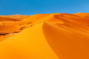 Erg Chebbi, zandduinen bij zonsondergang, Marokko van Markus Lange