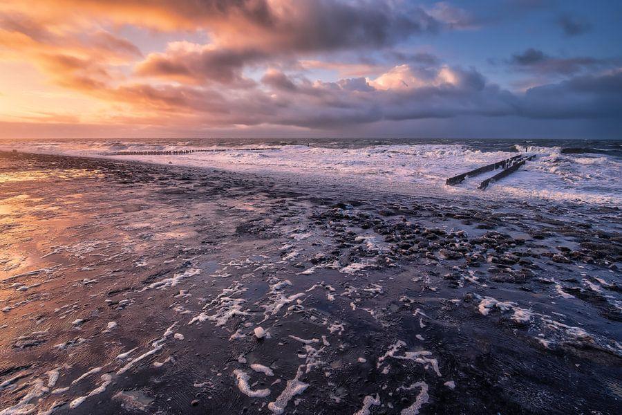 Taste the sea! van Sander Poppe
