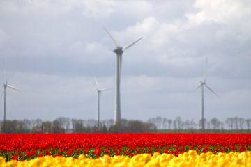 Tulpen met windmolen van Frouwkje Fotografie