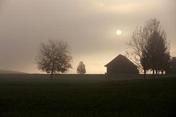 Herbstlicht van Jana Behr