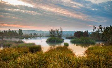 Herfst Heide von Peet de Rouw