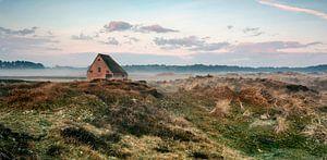 Schapenboet op Texel van Ronald Timmer