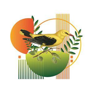 Of Birds and Shapes van Marja van den Hurk