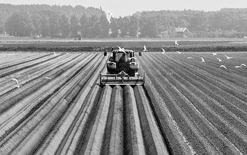 Landbouw van