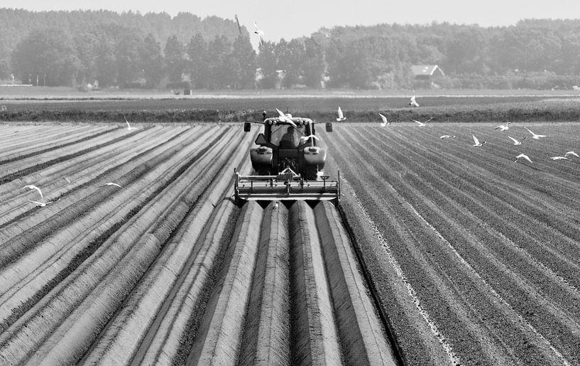 Landbouw von Sven Zoeteman