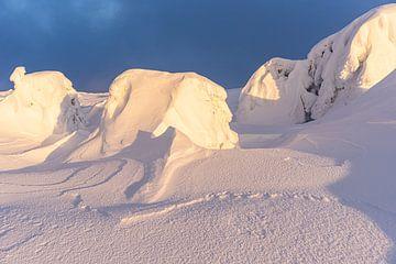 Sneeuwduinen in het licht van de ondergaande zon van André Post