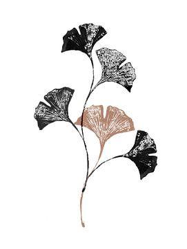 Gingko-Blätter von Olga Tromp