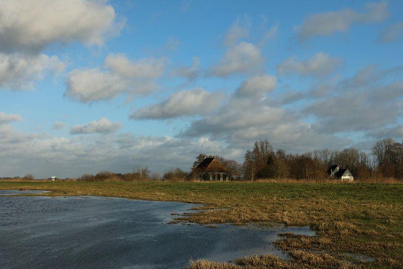 Fries landschapje van Pim van der Horst