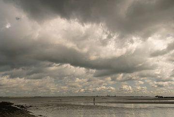 Bui boven strand, Nieuwvliet van Edwin van Amstel