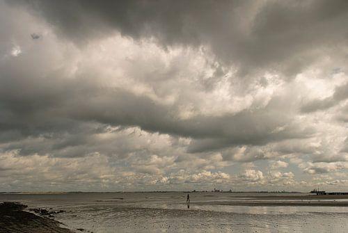 Bui boven strand, Nieuwvliet